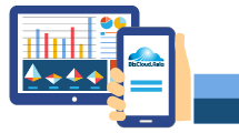 Multiple Reports In BizCloud App